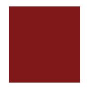 Minerva Beauty Scholarship icon